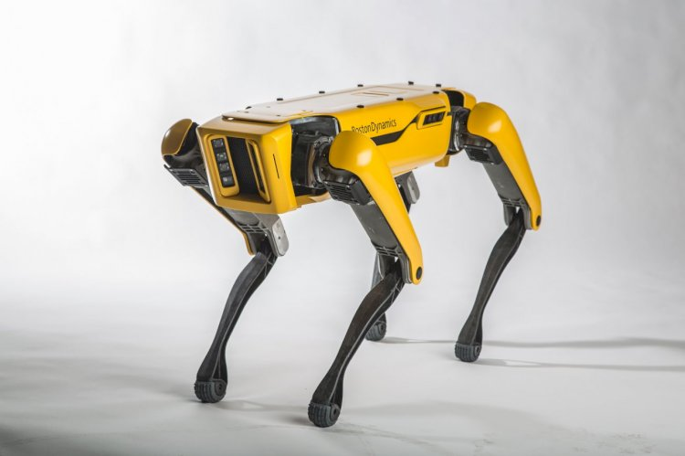 Boston Dynamics'den HANDLE SPOT MİNİ ve atası SPOT